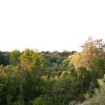agricampeggio-salento-macchia-mediterranea