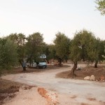 agricampeggio-terra-di-moro-salento-camping-ugento-3