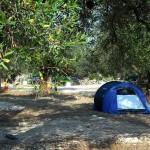 agricampeggio-vacanze-in-tenda
