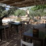 gastronomia agricampeggio salento campeggio terra di moro ugento (9)