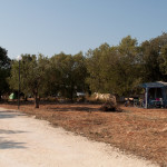 Agricampeggio-salento-estate-camper-1