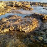 navetta al mare con campeggio salento terra di moro (1)