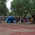 servizi campeggio salento ad ugento terra di moro (12)
