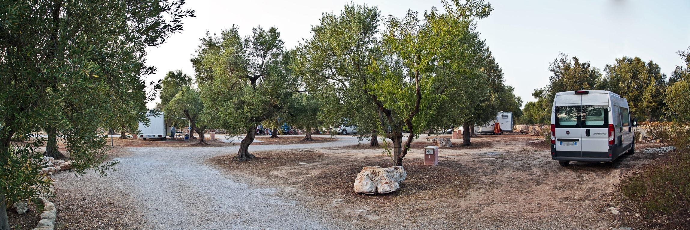 agricampeggio-salento-2017-6