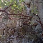 escursione in salento terra di moro (12)