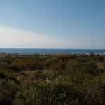 escursione in salento terra di moro (13)