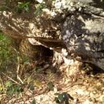 escursione in salento terra di moro (7)
